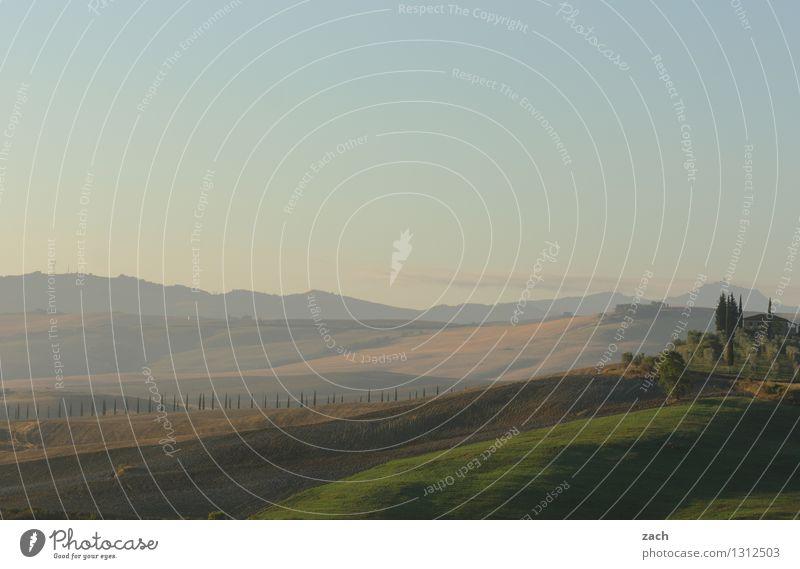 Kaffee dazu... Himmel Pflanze schön Sommer Baum Landschaft Haus Ferne Umwelt Wiese Wege & Pfade Feld Italien Schönes Wetter Romantik Hügel