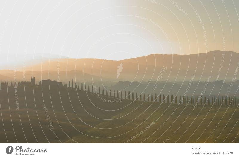 Tuschkasten Himmel Pflanze schön Sommer Baum Landschaft Haus Ferne Umwelt Wiese Wege & Pfade Feld Italien Schönes Wetter Romantik Hügel