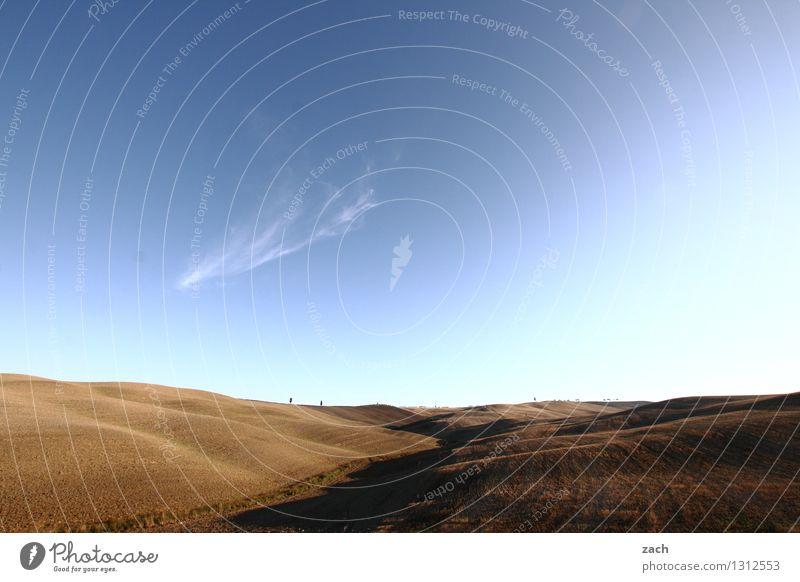 Das wird mal alles Dir gehören... Himmel blau Pflanze Sommer Baum Landschaft Ferne Umwelt braun Sand Feld Erde Italien Schönes Wetter Hügel trocken