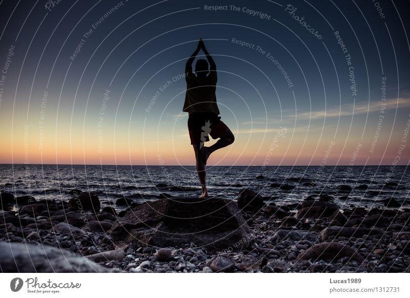 Yoga - Baum Mensch Ferien & Urlaub & Reisen Jugendliche Mann Erholung Meer Junger Mann ruhig Ferne Erwachsene Leben Bewegung Glück Freiheit maskulin
