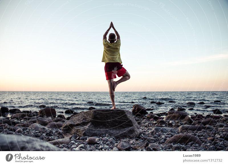 Yoga - Baum II Ferien & Urlaub & Reisen Jugendliche Mann Erholung Meer Junger Mann ruhig Strand Erwachsene Leben Sport Stein Felsen Zufriedenheit Tourismus