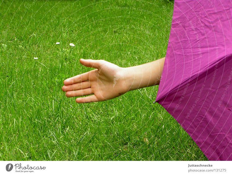 Bitte fahren Sie rechts ran....... stoppen Halt Aufenthalt Hand rosa grün Gras Wiese Spielen verstecken rückwärts Freude Macht Polizeikontrolle Regenschirm