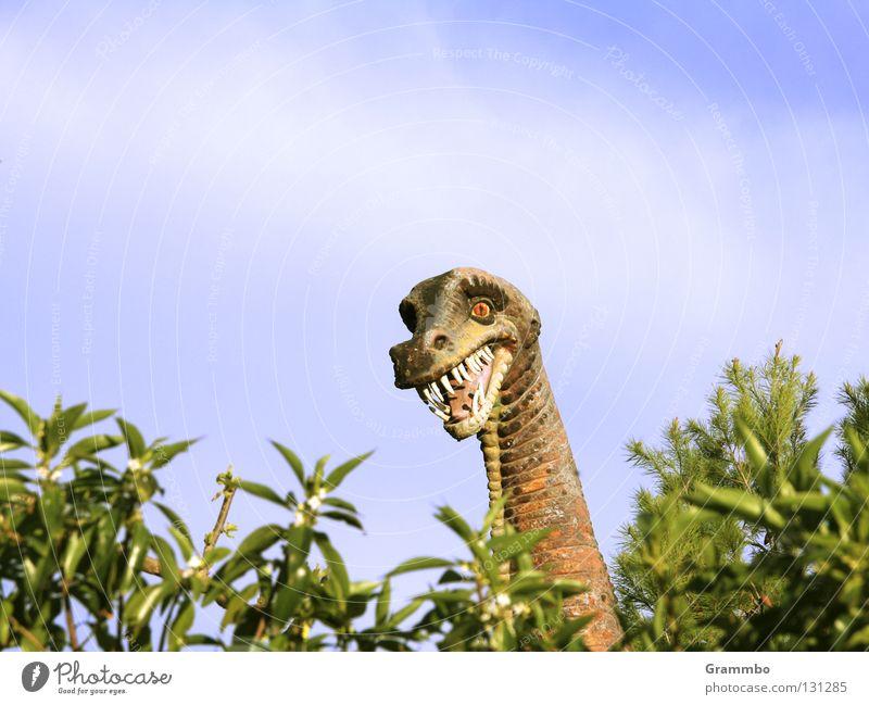 Hallo Nachbar Dinosaurier ausgestorben Hecke Freundlichkeit Mallorca Freude wie geht's? schönes Wetter heut' und bei Ihnen so? danke gut muss ja Gebiss Hals