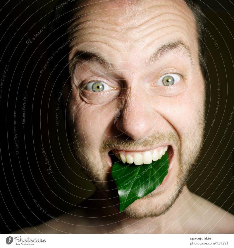 Grüne Zunge Mann schreien Porträt Freak Angst beängstigend dunkel schwarz Zähne zeigen böse verrückt Gefäße Blattadern grün Humor Freude Gesicht Mensch Gewalt