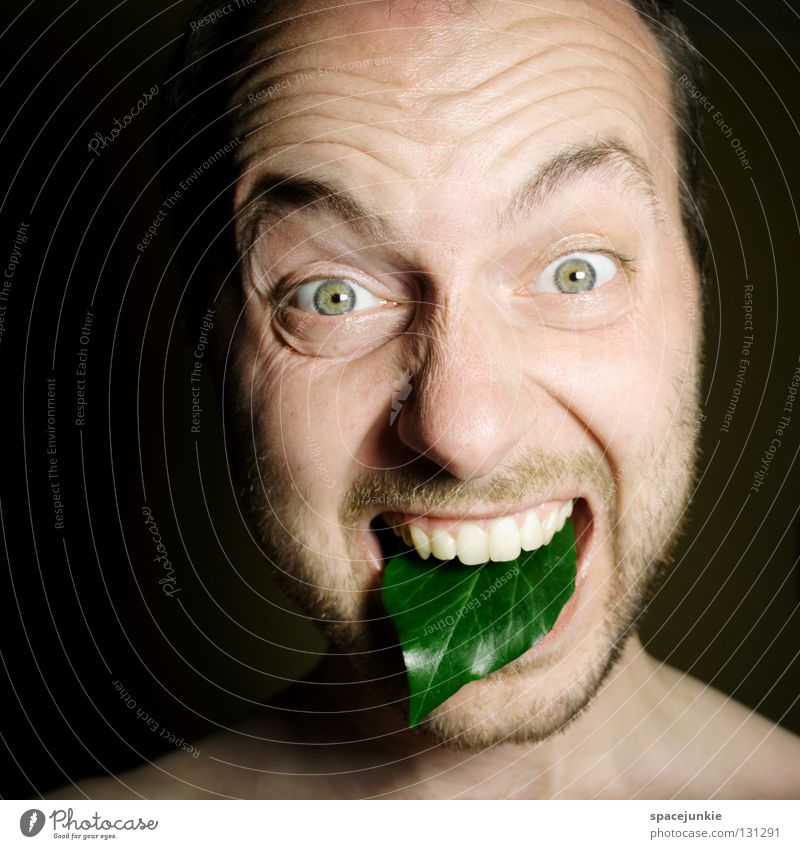 Grüne Zunge Mensch Mann grün Freude Gesicht schwarz dunkel Angst verrückt Bodenbelag schreien Gewalt böse Freak Zunge Humor