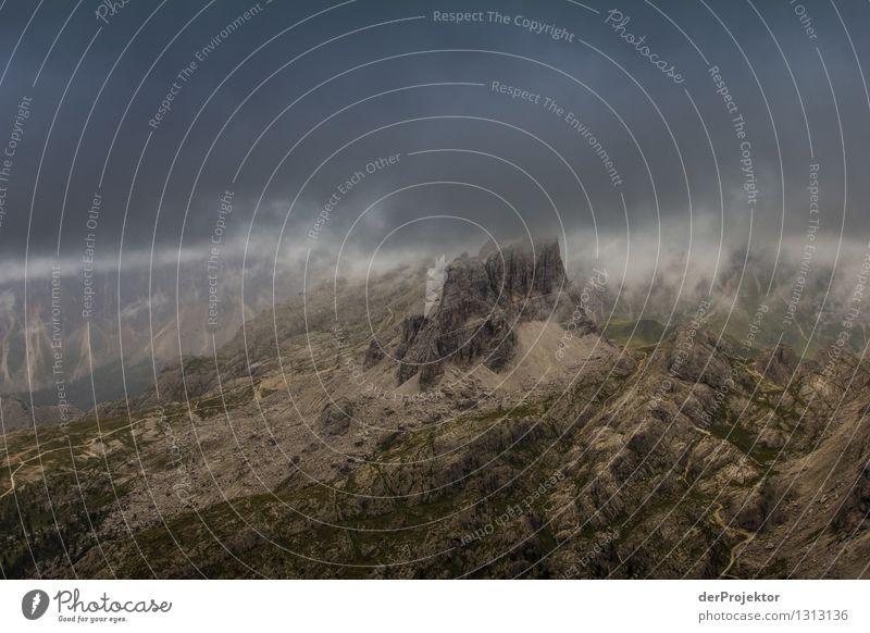 Unwetter in den Dolomiten Natur Ferien & Urlaub & Reisen Pflanze Sommer Landschaft Tier Ferne Berge u. Gebirge Umwelt grau Freiheit Felsen Tourismus Nebel Angst