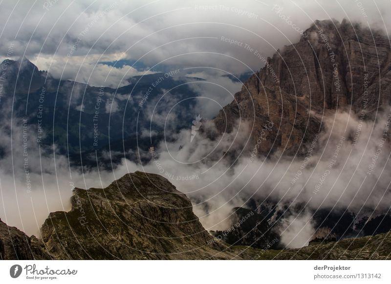 Ein Unwetter zieht auf Natur Ferien & Urlaub & Reisen Pflanze Sommer Landschaft Tier Ferne Berge u. Gebirge Umwelt Gefühle Freiheit Felsen Tourismus Nebel
