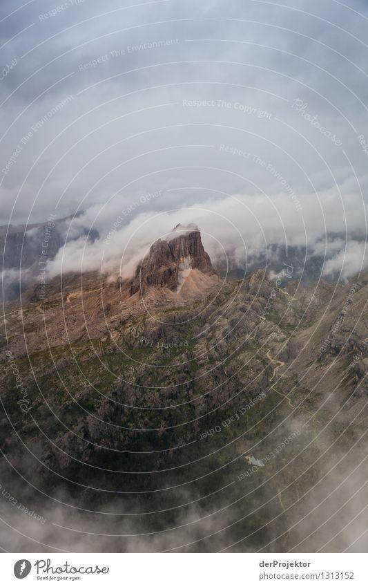 Nebeliger Blick auf Nuvolau Natur Ferien & Urlaub & Reisen Pflanze Sommer Landschaft Tier Ferne Berge u. Gebirge Umwelt Gefühle Wege & Pfade Freiheit Felsen