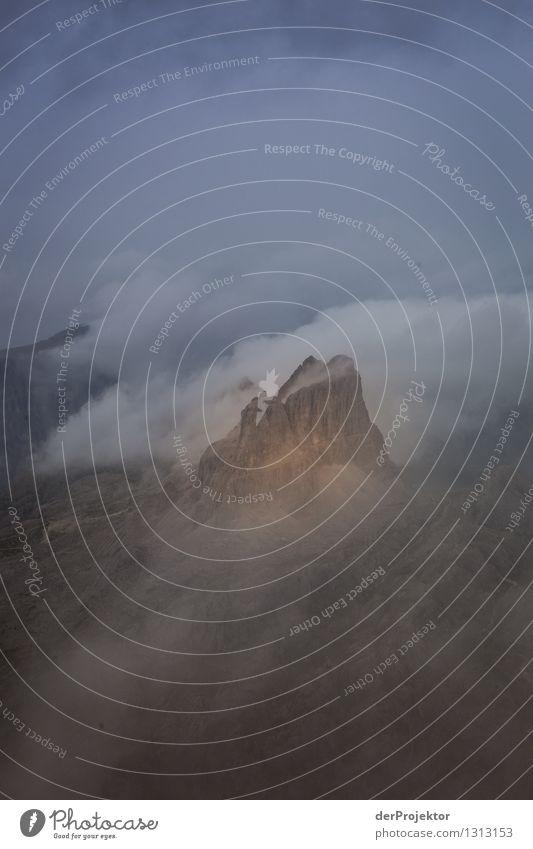 Insel im Wolkenmeer Natur Ferien & Urlaub & Reisen Pflanze Sommer Landschaft Tier Ferne Berge u. Gebirge Umwelt Freiheit Felsen Regen Tourismus Nebel wandern