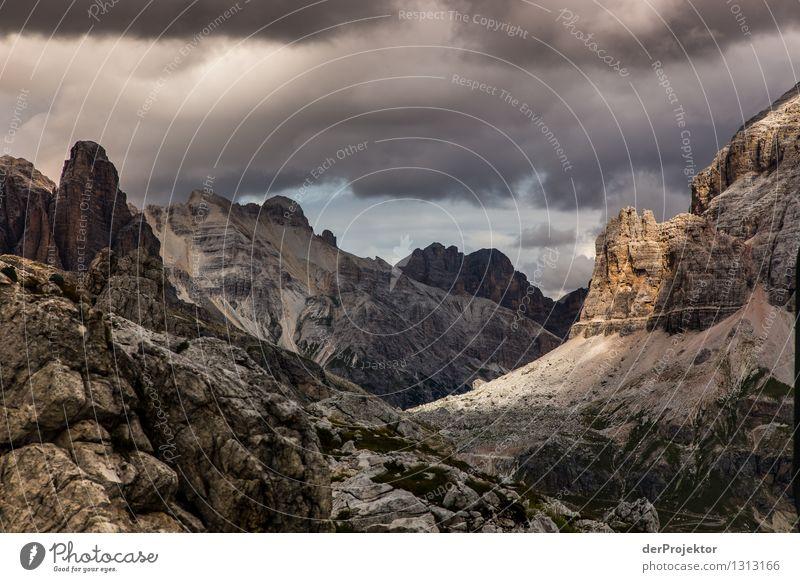 Dolomiten brachial Ferien & Urlaub & Reisen Tourismus Ausflug Abenteuer Ferne Freiheit Berge u. Gebirge wandern Umwelt Natur Landschaft Pflanze Tier Sommer