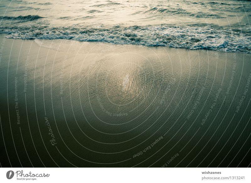 Water's Edge ll Natur Landschaft Urelemente Sand Wasser Sonnenlicht Wellen Küste Strand Meer Erholung frisch maritim gelb gold grün beweglich Wellness harmonie