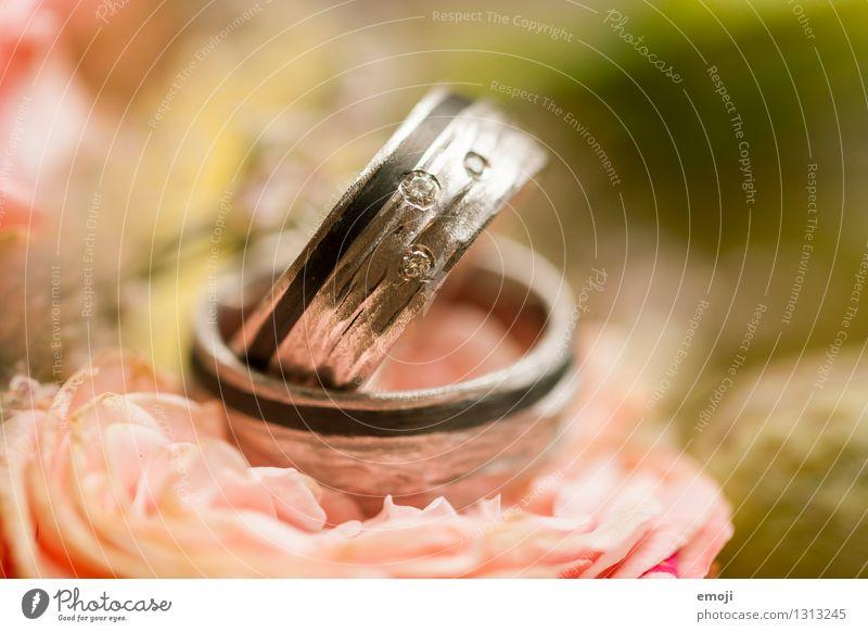 Ringe Feste & Feiern Hochzeit Accessoire Schmuck Ehering Vertrauen Zukunft Zusammenhalt teuer Kostbarkeit Farbfoto Innenaufnahme Makroaufnahme Menschenleer Tag