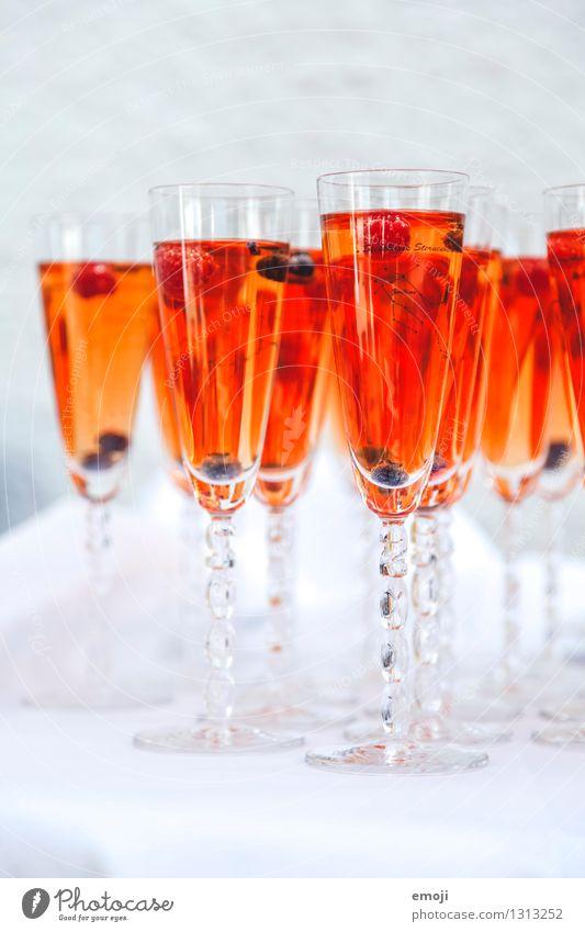 Drinks Getränk Erfrischungsgetränk Limonade Alkohol Sekt Prosecco Longdrink Cocktail Glas Sektglas lecker süß fruchtig Feste & Feiern Veranstaltung Party