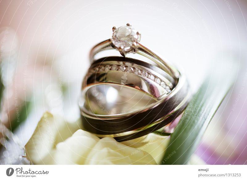 Ringe Feste & Feiern Hochzeit Schmuck Ehering verlobungsring ästhetisch elegant Erfolg teuer Kostbarkeit Farbfoto Außenaufnahme Makroaufnahme Menschenleer Tag