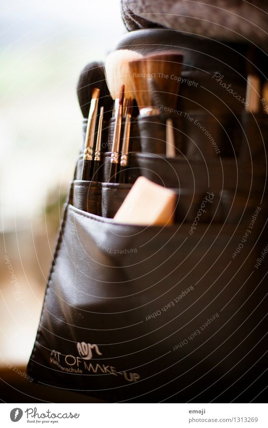 Pinsel Schminke Visagist Schminken Material Schönheitswettbewerb weich braun Farbfoto Innenaufnahme Nahaufnahme Detailaufnahme Makroaufnahme Menschenleer Tag