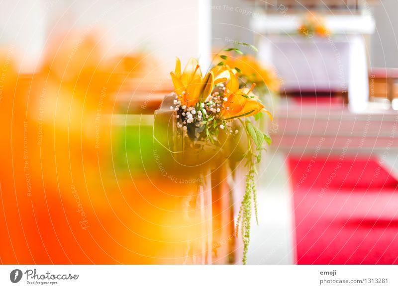 Kapelle Pflanze Blume Kirche Dekoration & Verzierung Kitsch Krimskrams hell orange Hochzeit Hochzeitszeremonie Farbfoto mehrfarbig Innenaufnahme Nahaufnahme