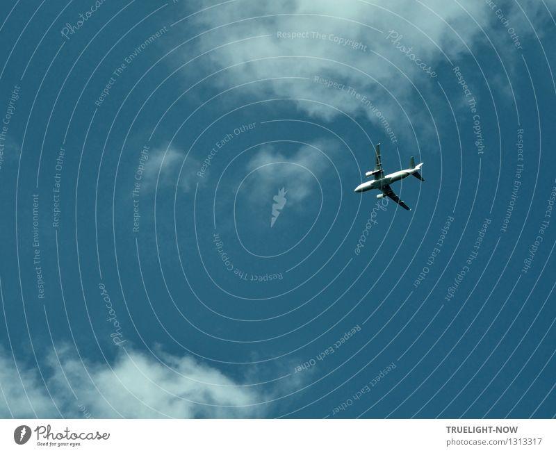 Schnell hin... oder weg! Ferien & Urlaub & Reisen Stadt blau weiß Ferne Freiheit fliegen glänzend Tourismus Luftverkehr elegant modern frei Erfolg ästhetisch