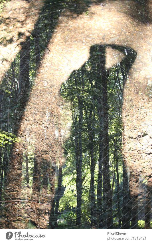 Waldmensch Natur Ferien & Urlaub & Reisen grün schön Sommer Baum Erholung Blatt Tier Stil außergewöhnlich Lifestyle Kunst braun Stimmung