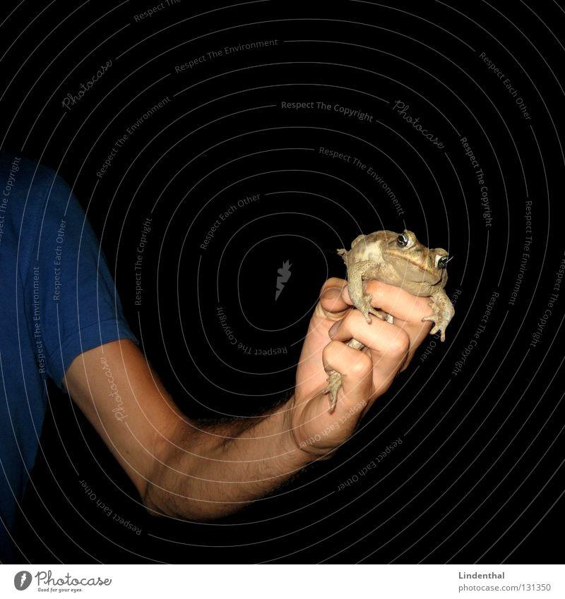 Catch the Kröte T-Shirt fangen gefangen blau Arme frog Frosch festhalten Mittelpunkt toad Auge