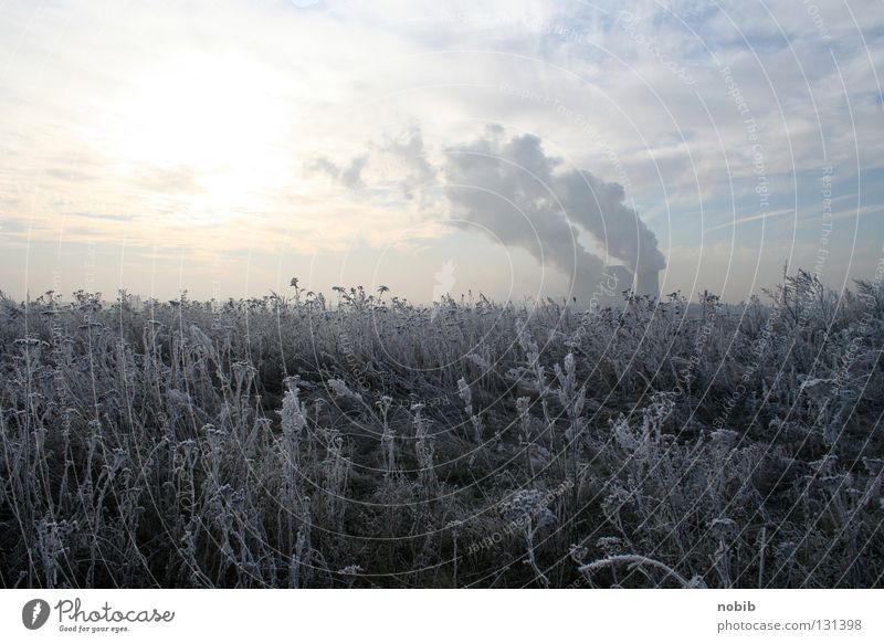 Frost Himmel Sonne Winter Wolken kalt Schnee Wiese grau Feld Rauch Stromkraftwerke Raureif Braunkohle Kühlturm