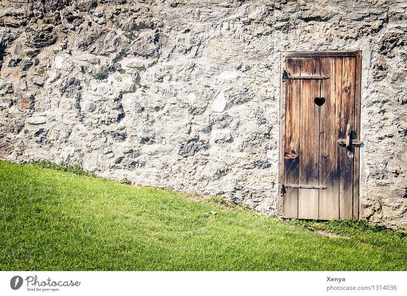 Holztür Stilles Örtchen Wand Stein braun grau grün Gras Steinmauer Toilette rustikal Außenaufnahme Menschenleer Tag Farbfoto Tür Mauer alt Fassade
