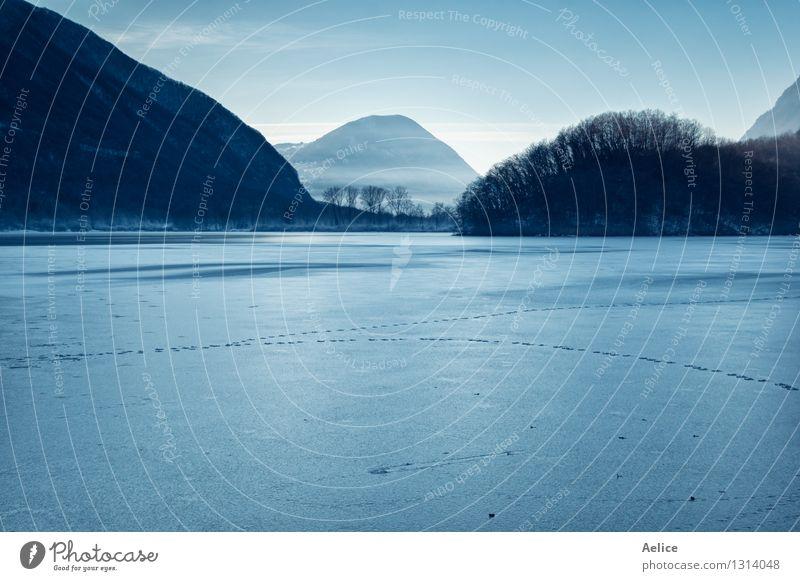 Atmosphärische Ansicht von bereiftem See in Nord-Italien Ferien & Urlaub & Reisen Winter Schnee Natur Landschaft Klima Wetter Schönes Wetter Nebel blau