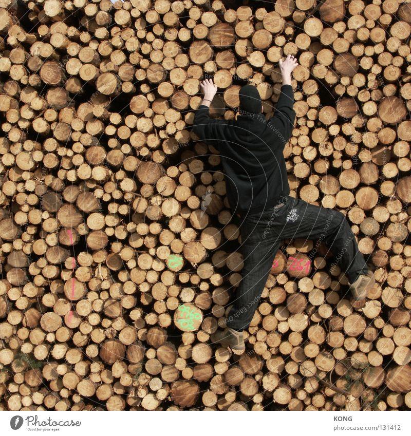 geckoesque Mann Baum schwarz Holz Kraft hoch Kreis festhalten Klettern Ende Baumstamm aufwärts hängen Material Stapel Lager