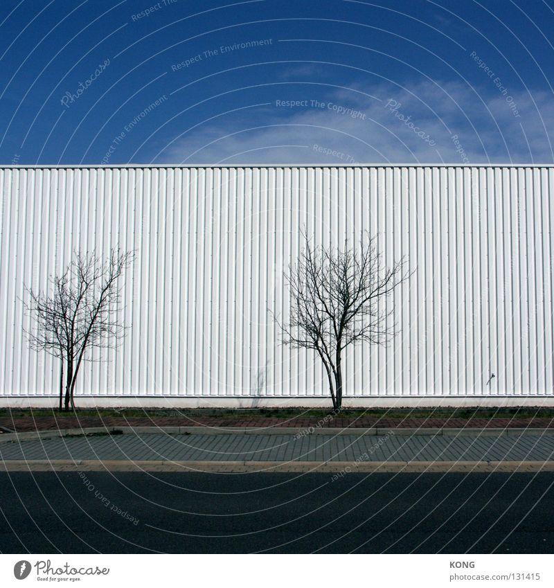 / / dezent Wellblech Fassade weiß Gebäude Möbelkaufhaus Baumarkt Gewerbe Gewerbegebiet Bürgersteig wellig Ordnung Strukturen & Formen leer ohne Menschenleer