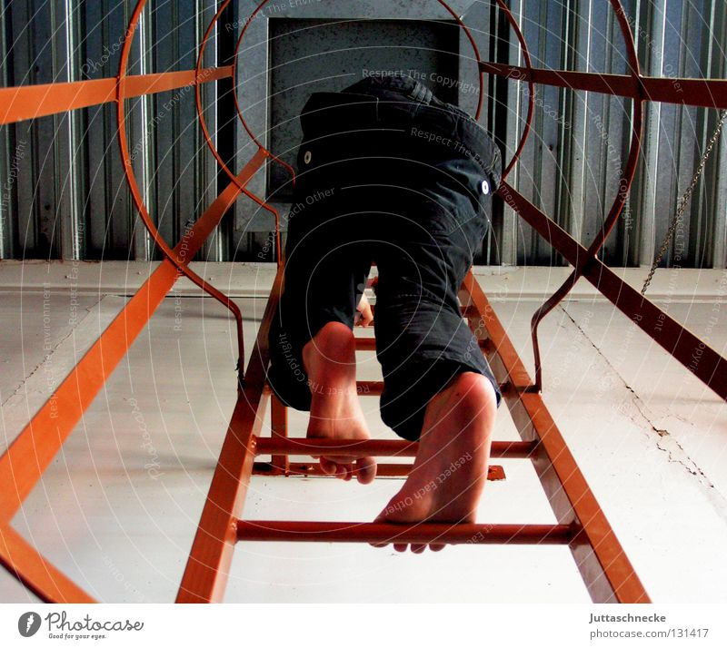 Ich will hoch hinaus! oben Erfolg Klettern Konzentration entdecken Leiter Höhenangst Verbote forschen aufregend Wissenschaftler Schwindelgefühl Feuerleiter