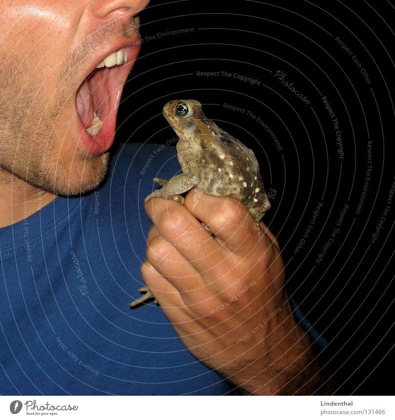 Eat the Kröte blau Ernährung Arme Essen T-Shirt fangen festhalten Frosch gefangen Fressen Mittelpunkt Kröte
