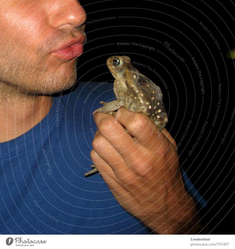 Kiss the Kröte blau Liebe Arme T-Shirt Küssen fangen festhalten Frosch gefangen Kuscheln Prinzessin besitzen Mittelpunkt verwandeln Verhext