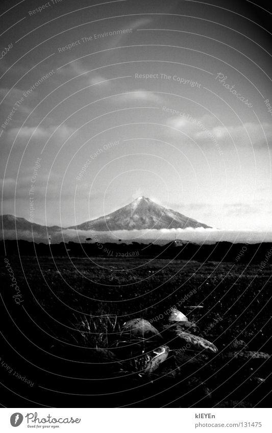 Mt. Taranaki weiß Ferien & Urlaub & Reisen schwarz Wolken Wiese Berge u. Gebirge Stein friedlich