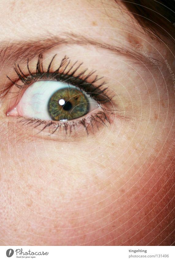 wide, wide open Wimpern Augenbraue Pupille grün braun nah verrückt Gefühle Rouge Wange Frau Regenbogenhaut aufreißen