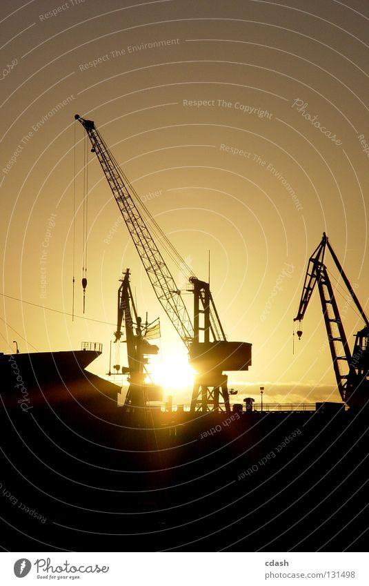 Hamburger Hafen Kran Sonnenaufgang Sonnenuntergang verladen löschen schwarz Gegenlicht Arbeit & Erwerbstätigkeit Industrie Kontrast