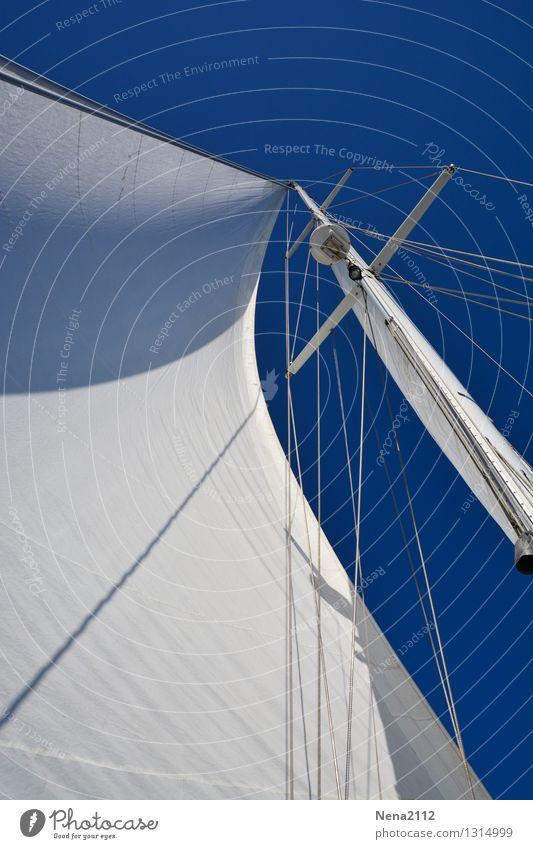 Heimkommen | Wenn der Wind es will Himmel Ferien & Urlaub & Reisen Sommer Sonne Meer Freude Ferne Strand Bewegung Freiheit Freizeit & Hobby Tourismus Kraft