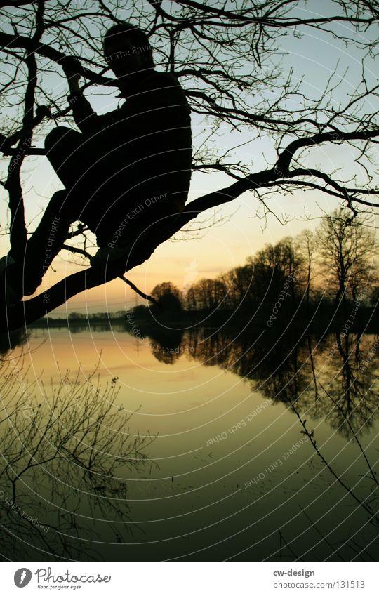 SITTING BULL Mann maskulin Licht schwarz dunkel trist grau Farbverlauf See Baum hocken Erholung links Reflexion & Spiegelung Dämmerung Sommer Halt festhalten