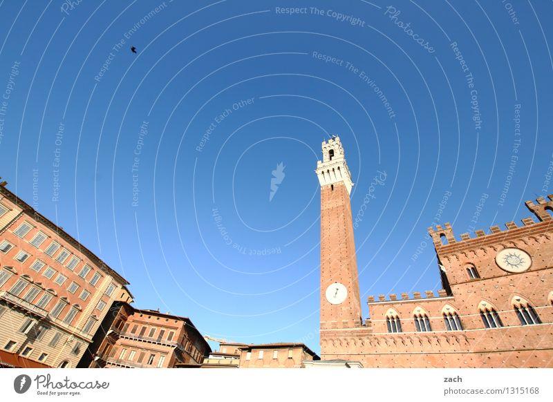auf die Größe kommt es an Ferien & Urlaub & Reisen Stadt blau Haus Fenster Wand Architektur Mauer braun Fassade Kirche Italien Turm historisch Bauwerk