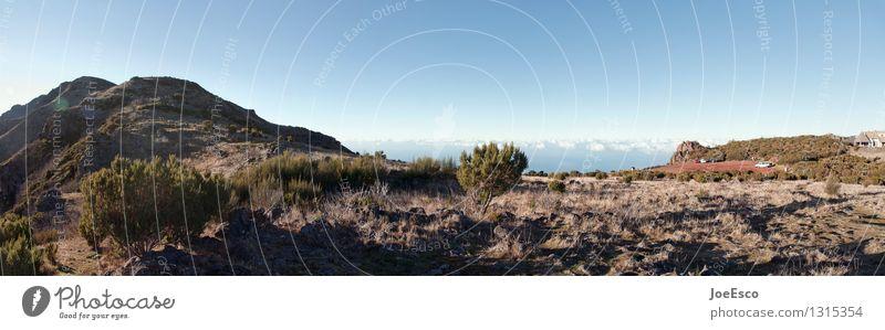 #1315354 Ferien & Urlaub & Reisen Ausflug Abenteuer Ferne Freiheit Berge u. Gebirge wandern Natur Landschaft Urelemente Himmel Wolken Horizont Blume Sträucher