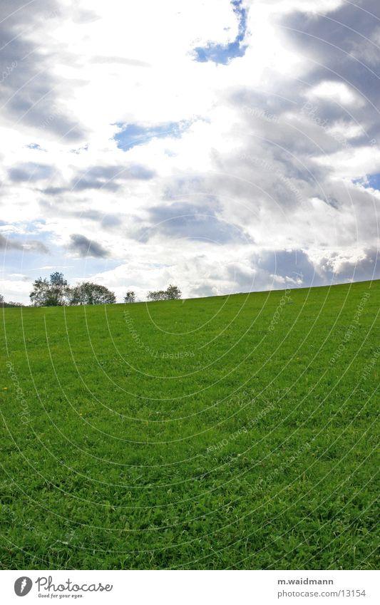 leichte steigung Wiese grün Gras Feld Wolken Baum Berge u. Gebirge Himmel