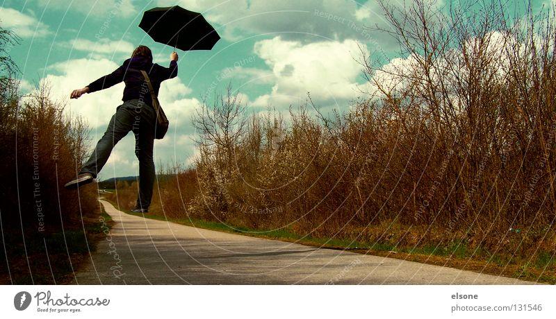 ::HARRY POPPINS:: fliegen Ferne träumen Sturm Regenschirm Sonnenschirm schwarz Fantasygeschichte Phantasie verloren Wege & Pfade Straße Sträucher Himmel Wolken