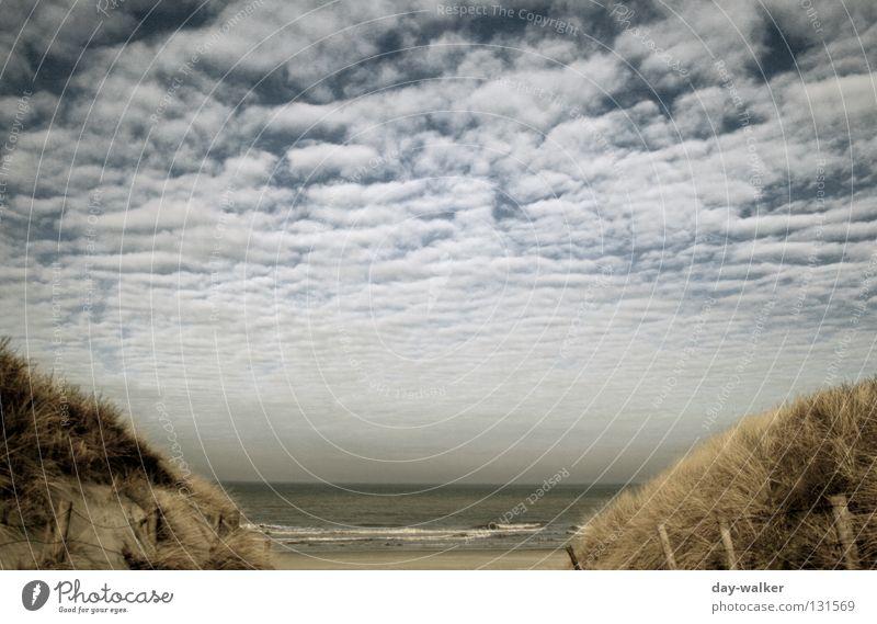 Ab durch die Mitte Natur Wasser Himmel Meer Strand Wolken Ferne Gras Wege & Pfade See Sand Wellen Küste Insel Zaun Stranddüne