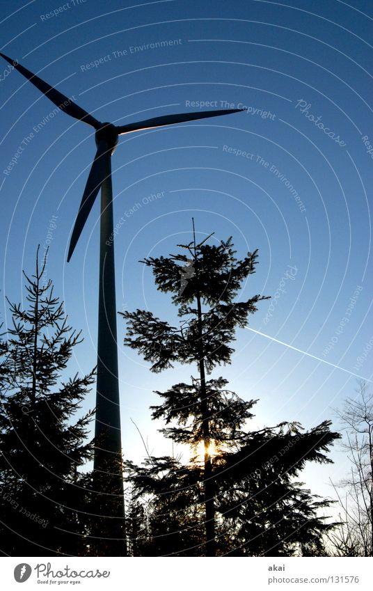 Natural Power Himmel Nadelbaum Wald himmelblau Geometrie Laubbaum Perspektive Nadelwald Waldwiese Paradies Waldlichtung Windkraftanlage Elektrizität schön