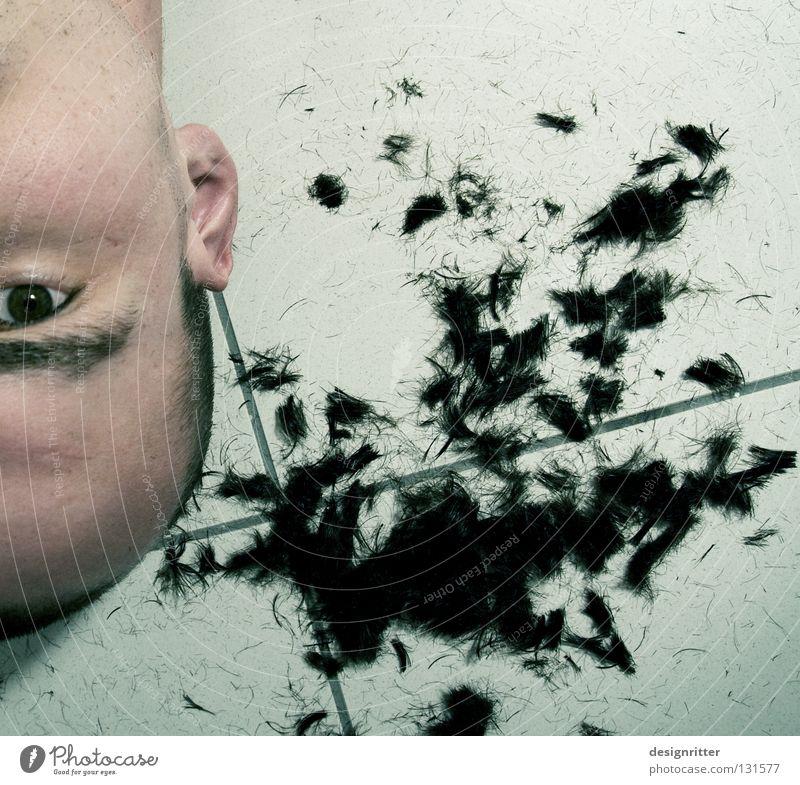 Extrem beschnitten Mann Auge Kopf Haare & Frisuren Erfolg Vergänglichkeit Ohr Friseur Glatze verloren Plattenbau verschönern geschnitten Anschnitt