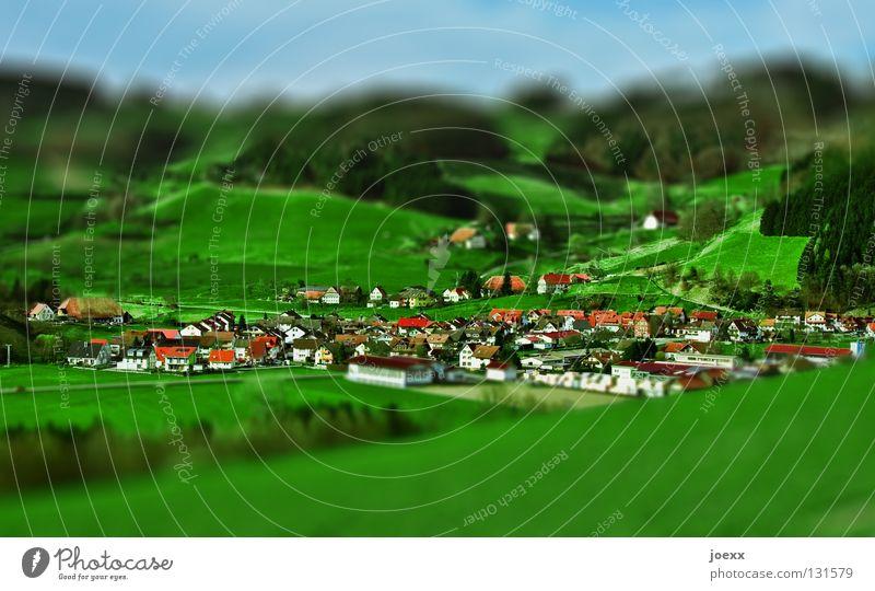 Kleinigkeit Baum Dorf grün Haus Hügel klein Miniatur Spielen Spielzeug Wald Wiese Makroaufnahme Nahaufnahme Freizeit & Hobby H0 hügelig Landschaft Muster