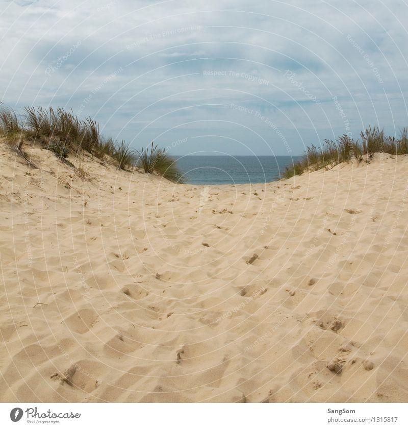 Dünenlandschaft mit Blick auf den Atlantik Himmel Natur Ferien & Urlaub & Reisen schön Sommer Wasser Meer Landschaft Wolken Ferne Strand Sand Zufriedenheit Wellen Europa Schönes Wetter