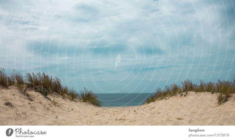 Atlantikblick Ferien & Urlaub & Reisen Ferne Freiheit Sommer Sommerurlaub Meer Natur Landschaft Sand Wasser Himmel Wolken Schönes Wetter Wind Sträucher Hügel