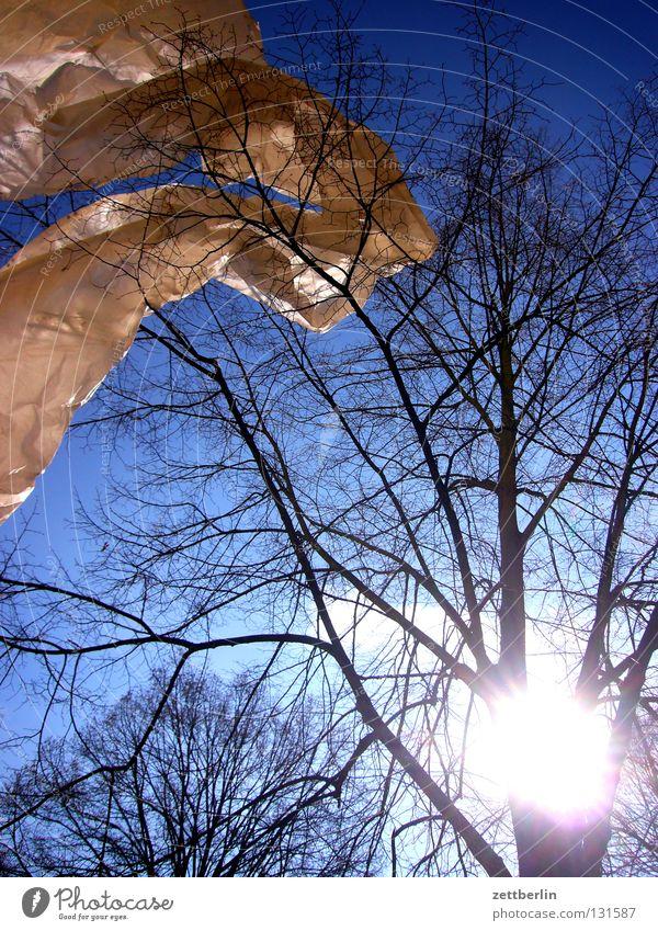Wunschwetter Abdeckung Bauplane Sturm flattern Wellen himmelblau Baum Himmel Schnur blaues band frühlingsopfer Wind wehen Bewegung Dynamik Ast Zweig