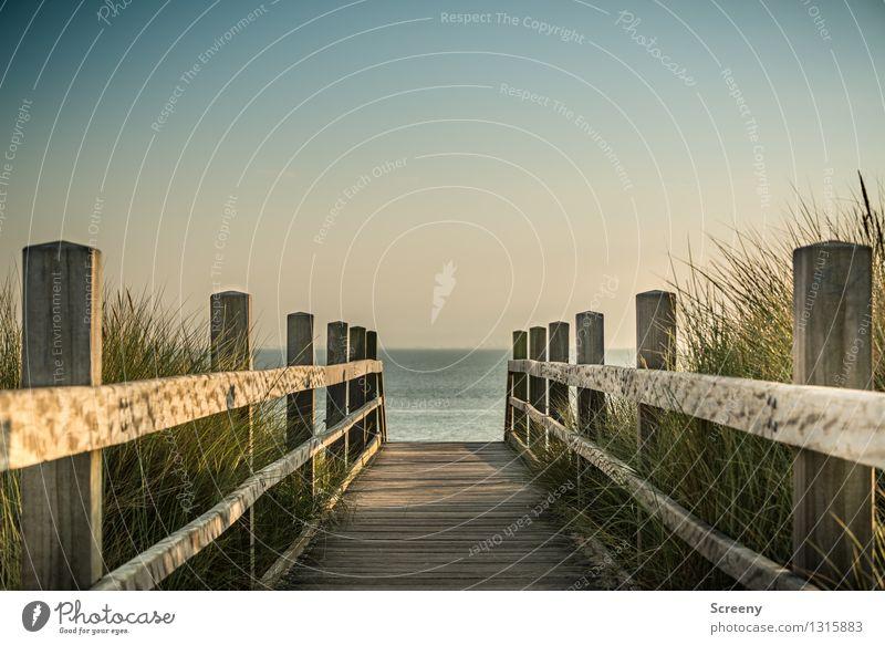 Zielgerichtet Himmel Natur Ferien & Urlaub & Reisen Pflanze blau grün Sommer Wasser Meer Landschaft ruhig Ferne Gras Wege & Pfade Küste braun