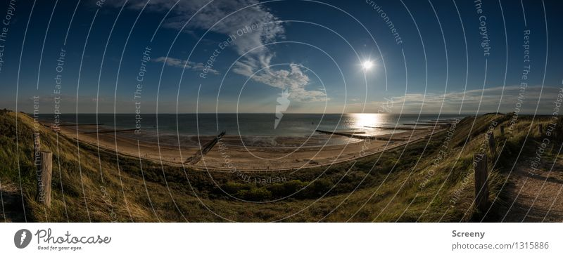 Weite Blicke Himmel Natur Ferien & Urlaub & Reisen Pflanze Sommer Sonne Erholung Meer Landschaft ruhig Wolken Ferne Strand Wege & Pfade Küste Freiheit