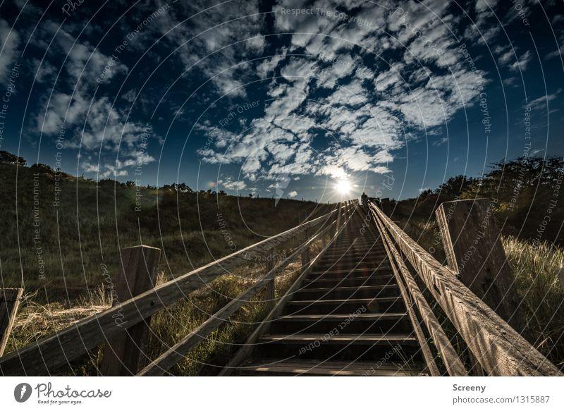 Stairway to heaven Himmel Natur Ferien & Urlaub & Reisen Pflanze Sommer Sonne Meer Landschaft Wolken Gras Küste Freiheit hell Treppe Tourismus leuchten